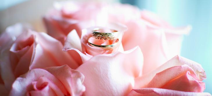 Наши свадебные фотографии - кольца