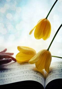 Весенние ноты