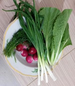 Салат с редиской, яйцами, луком и капустой